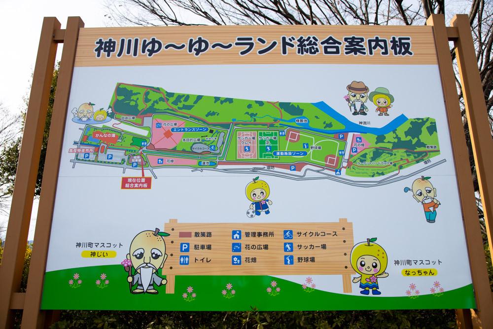 神川ゆ〜ゆ〜ランド自由広場